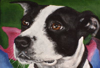 Painting - Ziggy by Carol Russell