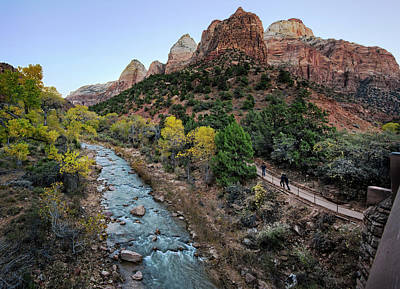 Photograph - Zion National Park by Phil Cardamone