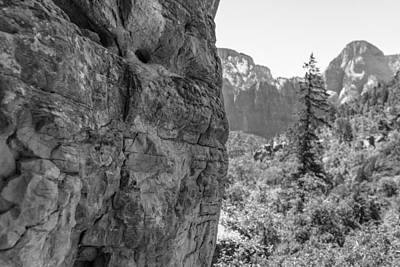 Photograph - Zion Overlook by John McGraw