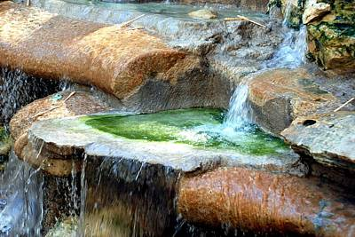 Photograph - Zoo Waterfall by Kenny Glover