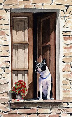 Boston Terrier Art Print by David Rogers