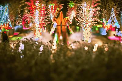 Lovely Lavender - Christmas Light Bokeh At Daniel Stowe Gardens Belmont North Caro by Alex Grichenko