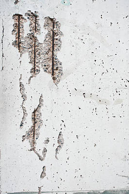 Asbestos Photograph - Damaged Wall by Tom Gowanlock