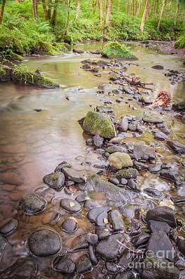Photograph - Goit Stock Falls On Harden Beck,  by Mariusz Talarek
