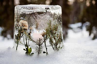Photograph - Ice Lantern by Kati Finell