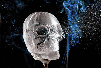 Photograph - Ice Skullpture by Max Neivandt