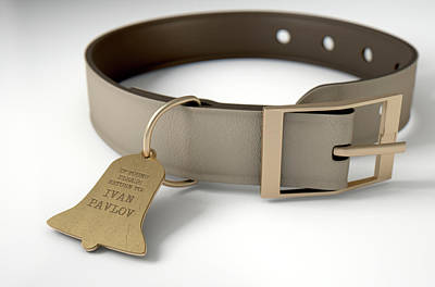 Pets Digital Art - Leather Collar With Tag by Allan Swart