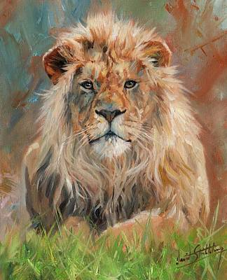 Lion Original by David Stribbling