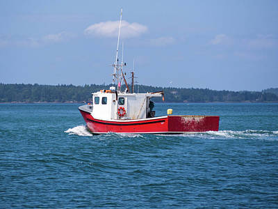 Photograph - Lubec, Maine  by Trace Kittrell
