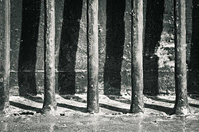 Cellar Photograph - Metal Bars by Tom Gowanlock