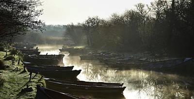 Photograph - Morning Glory by Barbara Walsh