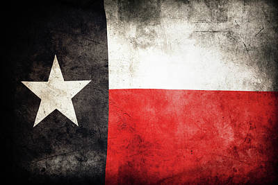 Photograph - Texas Flag 1 by Les Cunliffe