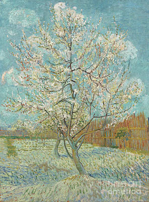 Painting - The Pink Peach Tree by Vincent Van Gogh
