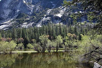 Photograph - Yosemite National Park by Harvey Barrison