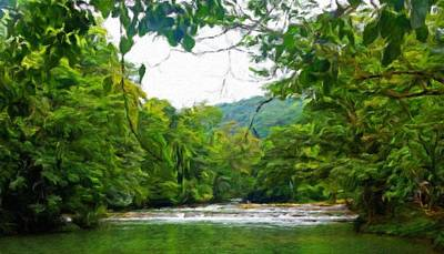Water Painting - Landscape Paintings Canvas Prints Nature Art  by Margaret J Rocha