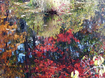 Photograph - Most Awesome Blast Of Color ,autumn In Maine  by Expressionistart studio Priscilla Batzell