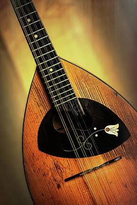 Photograph - 10.1845 Framus Mandolin by M K  Miller
