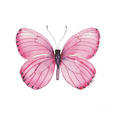 Farmhouse Rights Managed Images - 106 Pink Marcia Butterfly Royalty-Free Image by Amy Kirkpatrick