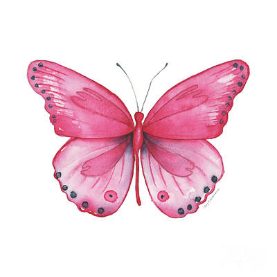 Painting - 107 Pink Genus Butterfly by Amy Kirkpatrick