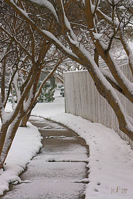 Slushy Photograph - 10735 Crepe Myrtles In Snow by John Prichard