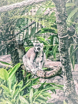 Mixed Media - 10773 Cotton Topped Tamarin by Pamela Williams