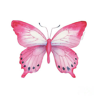 Painting - 108 Pink Laglaizei Butterfly by Amy Kirkpatrick