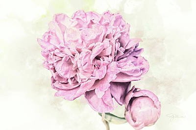 Mixed Media - 10861 Spring Peony by Pamela Williams