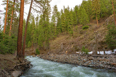 Photograph - 10895 Hells Canyon Spring Stream by Pamela Williams