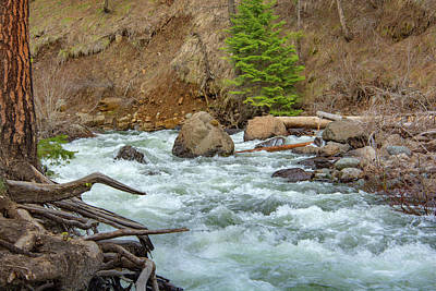 Photograph - 10896 Mountain Stream by Pamela Williams