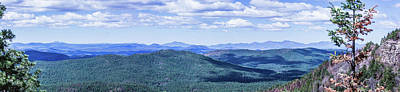 Photograph - 10897 Mogollon Rim by Pamela Williams