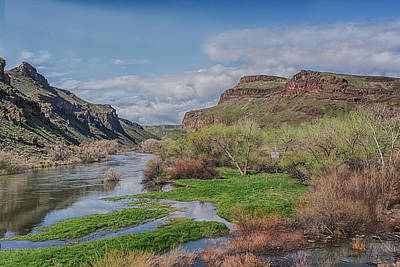 Photograph - 10904 Spring On The Owhyee River by Pamela Williams