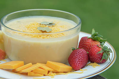 Photograph - 10974 Cheese Soup by Pamela Williams