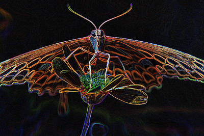 Mixed Media - 10990 Neon Butterfly by Pamela Williams