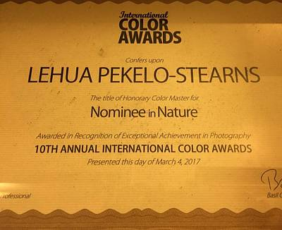 Photograph - 10th Annual International Color Awards Honors Photographer Lehua Pekelo Stearns Of Hawaii  by Lehua Pekelo-Stearns