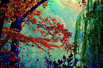 Autumn Colors Art Print by Aron Chervin