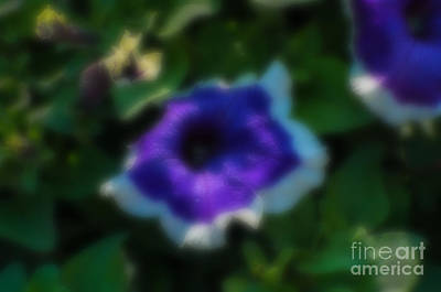 Grimm Fairy Tales - Blurred seasonal flower with dark background by Rudra Narayan  Mitra
