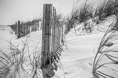 Photograph - Grassy Windy Sand Dunes On The Beach by Alex Grichenko