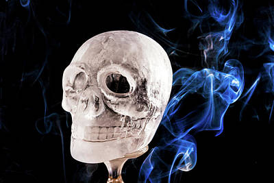 Photograph - Ice Skullpture by Max Neivandt