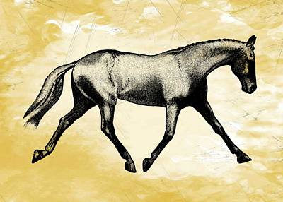 Lengthen Trot Stencil Art Print by JAMART Photography