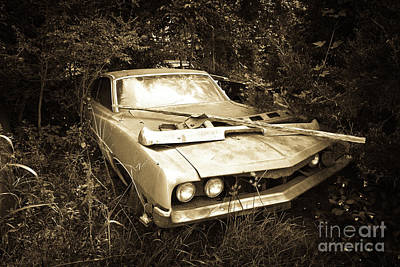 Photograph - Mustang  by Avril Christophe