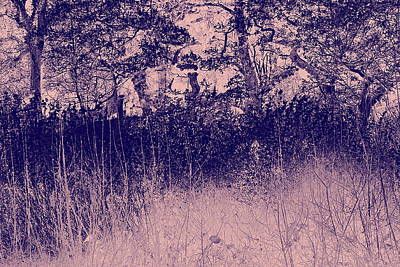 Clearing Mixed Media - Nature by Frances Lewis