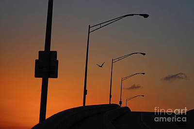 Photograph - 11-  Pelican Sky by Joseph Keane