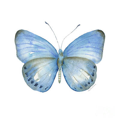 Painting - 110 Blue Jack Butterfly by Amy Kirkpatrick
