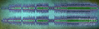 Heartbreaker Digital Art - 11143 Pirate Love By The Heartbreakers Blue Version by Colin Hunt