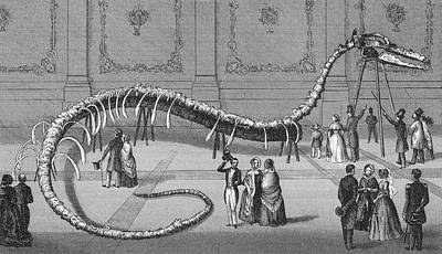 Fossil Drawing - 114 Feet Long Skeleton Of Fake Sea by Vintage Design Pics