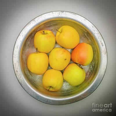Fruit Arrangement Photograph - Apples by Bernard Jaubert