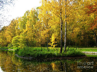 Photograph - Autumn Landscape by Irina Afonskaya