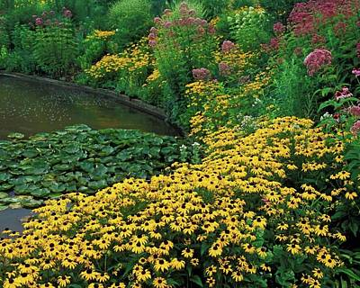 Yellow Digital Art - Flower by Super Lovely