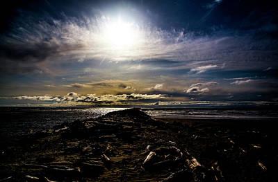 Winter Animals - Heceta Beach by Angus Hooper Iii