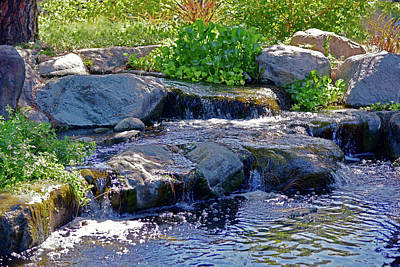 Af Vogue - 12 Lily Pond Waterfall  by Linda Brody